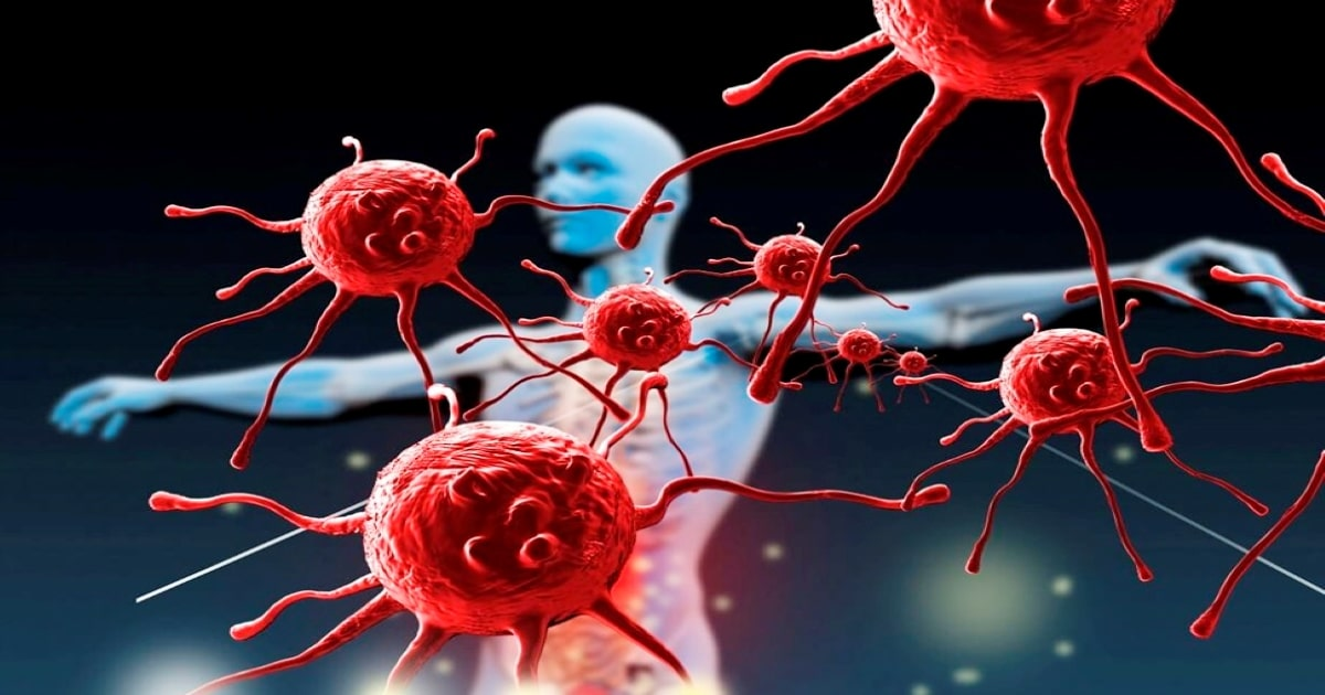 A human body attacking by the virus and bacteria, this shows how our immune system fights against diseases.
